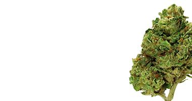 Clinical Endocannabinoid Deficiency Syndrome – Herba Releaf